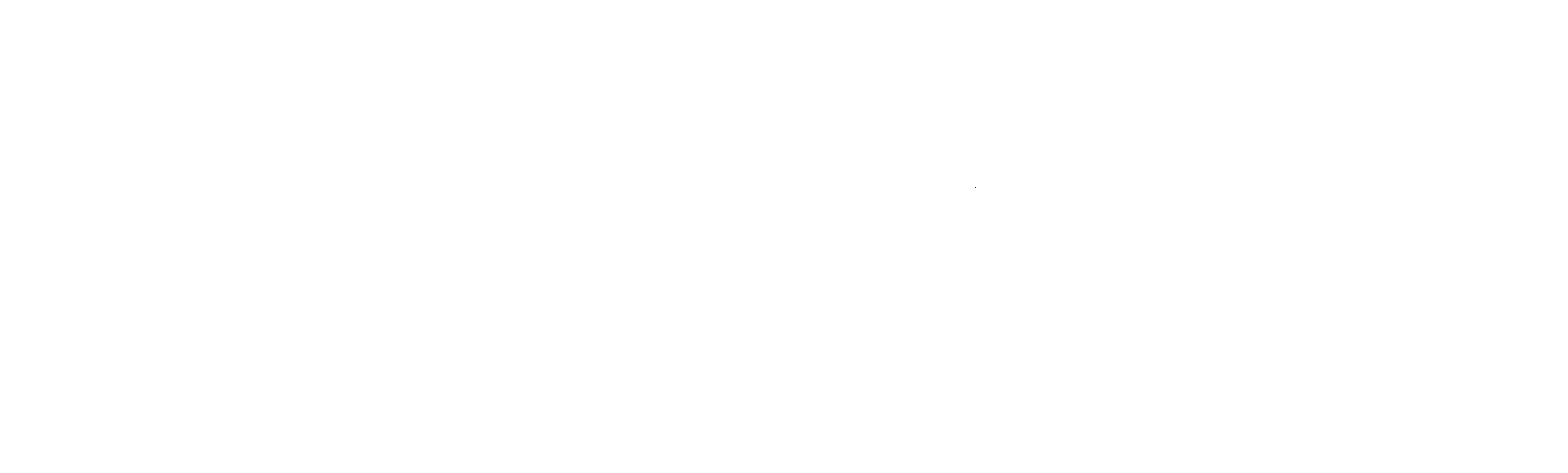 Can Formiga